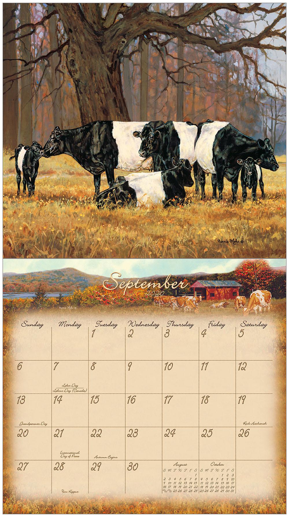 Kalender Bonnie Mohr